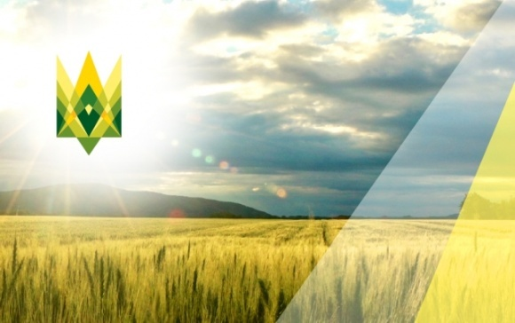 Аграрні асоціації розкритикували ідею меморандуму щодо квот на імпорт добрив фото, ілюстрація