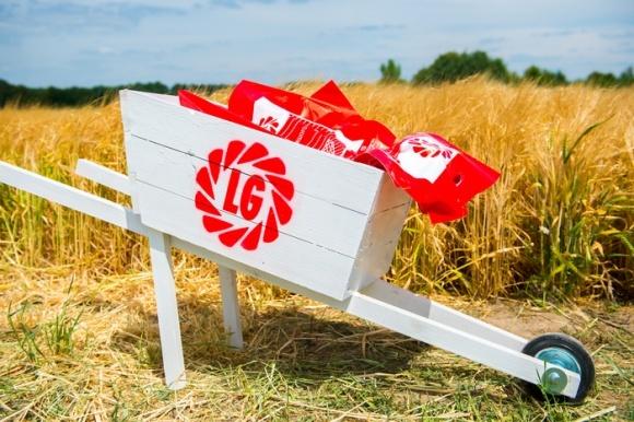 """""""Лимагрейн Украина"""" планирует инвестировать в селекцию пшеницы фото, иллюстрация"""