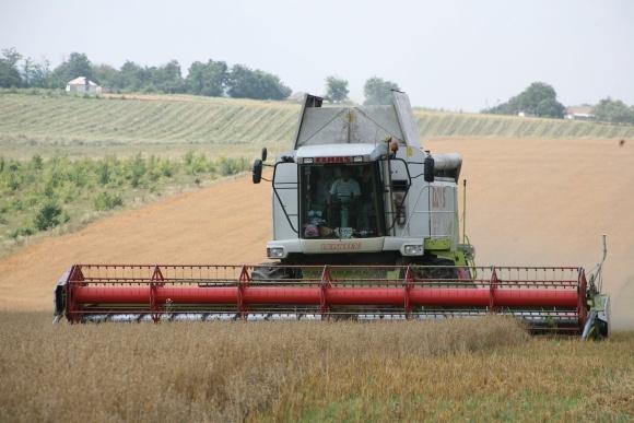 7 областей вже зібрали урожай зернових фото, ілюстрація