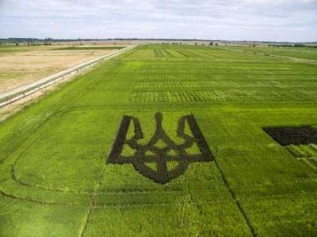 Рынок земли: Есть ли риск того, что украинская земля станет российской? фото, иллюстрация