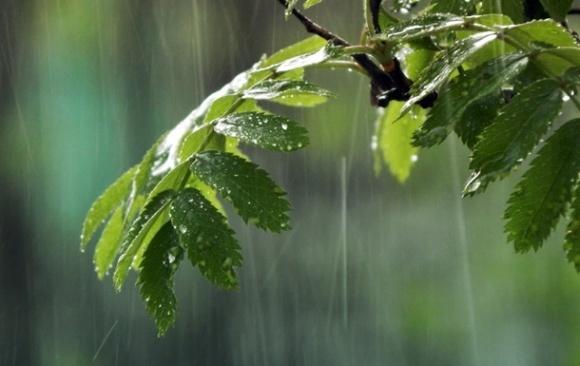 Дощі на 2 дні підуть з України, а потім знову прийдуть із заходу фото, ілюстрація