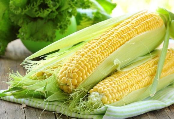 Украина ожидает рекордный урожай кукурузы, а также рост продаж в Китай фото, иллюстрация