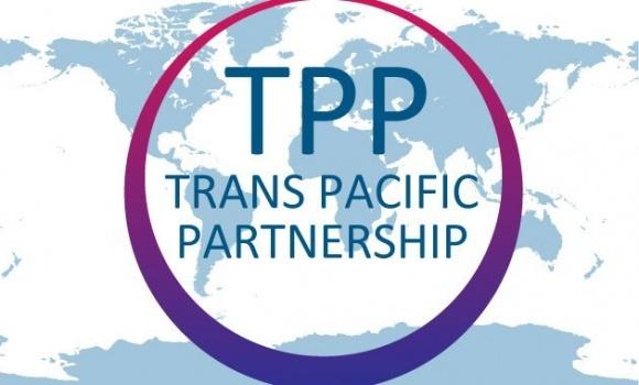 Страны-участники Транстихоокеанского партнерства продолжат работу без США фото, иллюстрация
