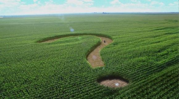 Сельское хозяйство меняет климат также как вырубка лесов фото, иллюстрация