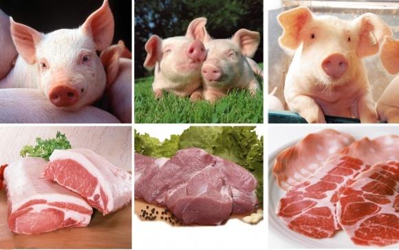 Из-за АЧС от украинской свинины отказались 4 государства фото, иллюстрация