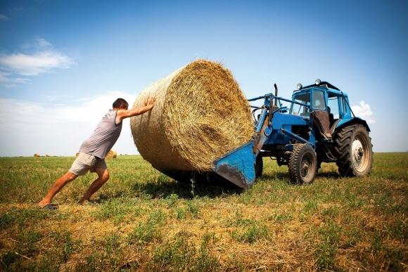 70% агропредприятий Украины - фермерства фото, иллюстрация