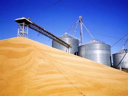 Держрезерв розширює ф'ючерсну торгівлю зерном на своїх елеваторах фото, ілюстрація