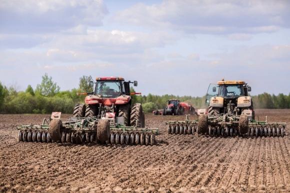 Як децентралізувати агрохолдинги? фото, ілюстрація