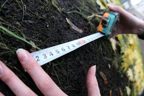 Запровадження нової нормативної грошової оцінки земель сільгосппризначення зумовить зниження доходів місцевих бюджетів у 2019 році – Інститут аграрної економіки фото, ілюстрація