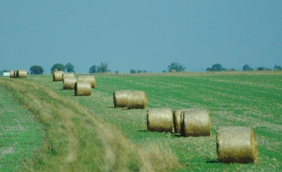 Благодаря аграрным распискам в аграрный сектор Украины уже привлечено почти 3 млрд гривен фото, иллюстрация