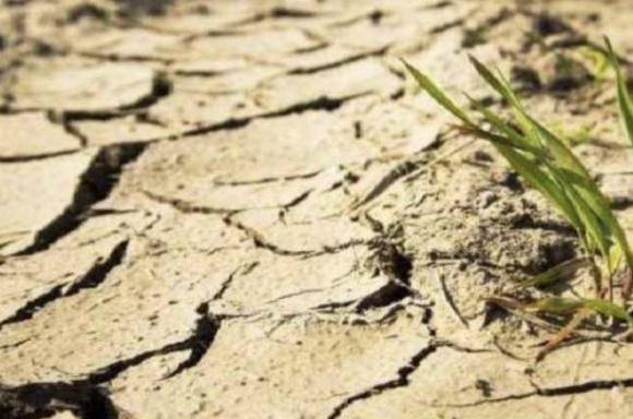 Эксперты уверены, что на восстановление Крыма после засухи уйдет 30 лет фото, иллюстрация