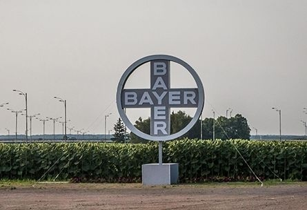 Bayer відкриє доступ до своїх напрацювань про рослини всім вченим фото, ілюстрація