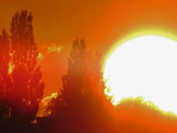 Коли в тіні за 40. Європа знемагає від аномальної спеки фото, ілюстрація