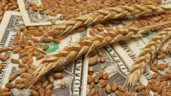 «Черный рынок» агробизнеса атакует гривню фото, иллюстрация