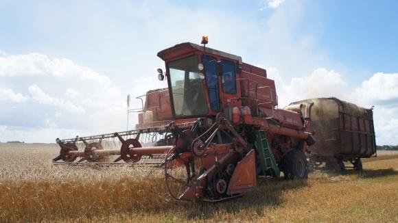 Фермеры собрали 97% ранних зерновых фото, иллюстрация