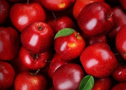 Украинские садоводы прогнозируют существенное сокращение урожая яблок фото, иллюстрация
