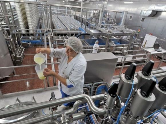 Программу господдержки АПК планируют расширить на перерабатывающие предприятия фото, иллюстрация