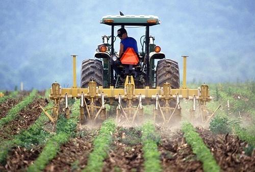 Для фермеров хотят создать отдельную группу налогообложения фото, иллюстрация