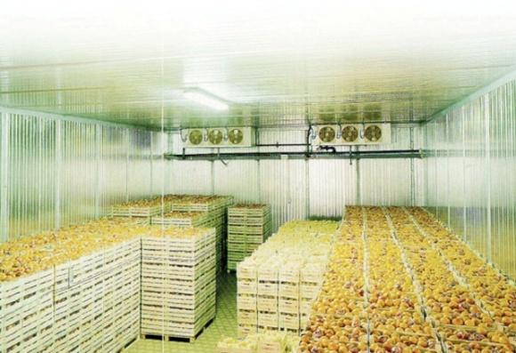 Аграріям радять не купувати дешеве вживане холодильне обладнання з ЄС фото, ілюстрація