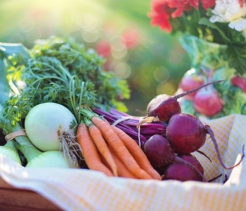 Як за рік в Україні змінилась пропозиція овочів борщевого набору фото, ілюстрація