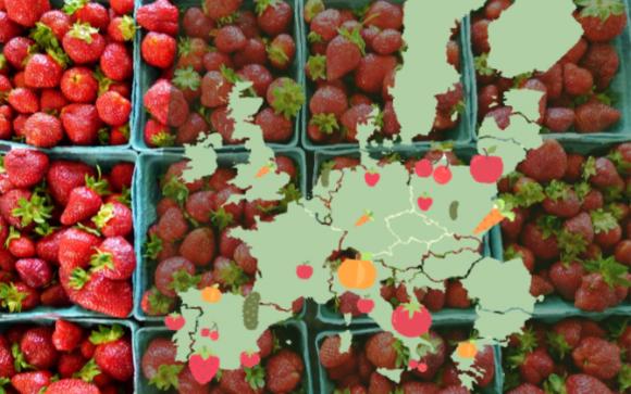 Названы самые популярные фрукты и овощи в ЕС фото, иллюстрация