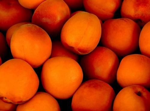 У липні 2019 року оператори ринку «Шувар» продали майже річний обсяг абрикосів фото, иллюстрация