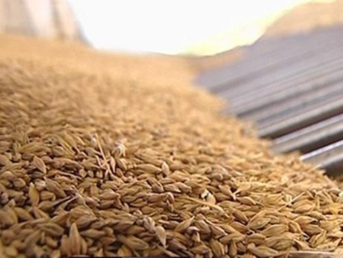 За месяц Украина экспортировала уже более 3.7 млн тонн зерна фото, иллюстрация