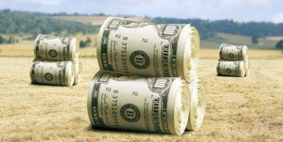 В Україні прогнозується подальше уповільнення інвестиційної активності в сільському господарстві фото, ілюстрація