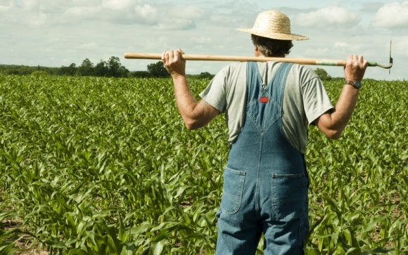 Запорожским фермерам вернули похищенные у них предприятия фото, иллюстрация