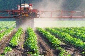 Кабмин упростил ввоз в Украину незарегистрированных пестицидов и агрохимикатов фото, иллюстрация