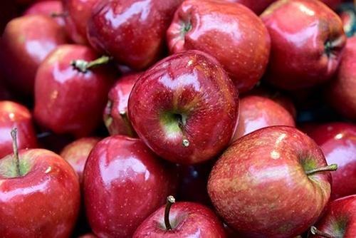 За три місяці нового сезону Україна імпортувала яблука більше ніж експортувала фото, ілюстрація