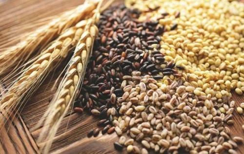 Експорт зернових перевищив 35 млн тон фото, ілюстрація