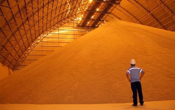 Запаси зерна в Україні збільшилися на 10,4% фото, ілюстрація