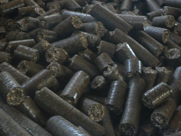 Нову універсальну лінію з виробництва пелет і брикетів запущено на Рівненщині  фото, ілюстрація