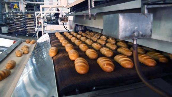 Под Киевом планируется открытие  завода по производству замороженных хлебных изделий  фото, иллюстрация