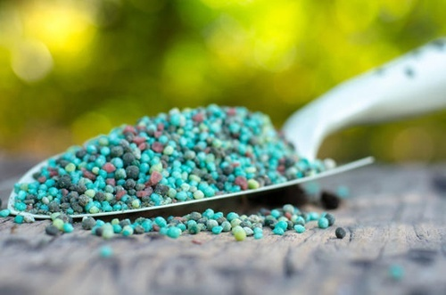 Аграрии обеспечены минеральными удобрениями на 108% фото, иллюстрация