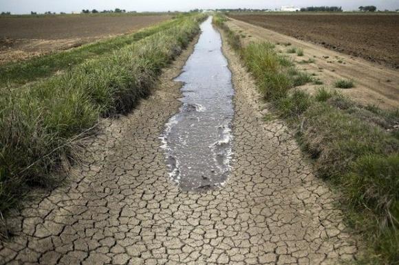 У Європі від посухи потерпають овочі. Урожай під загрозою фото, ілюстрація