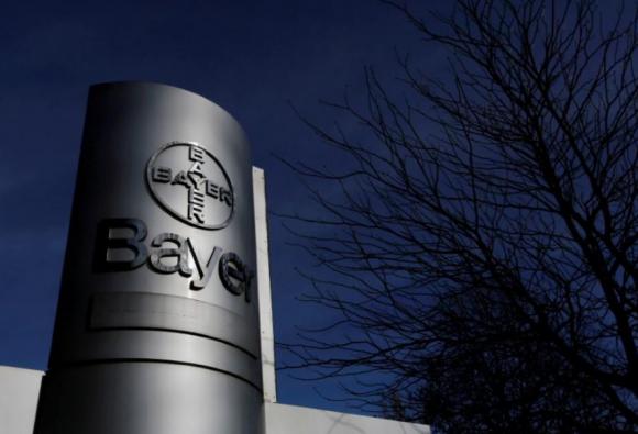 Bayer проводит эксклюзивные переговоры с BASF о продаже Nunhems фото, иллюстрация