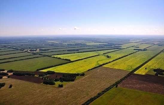 За прошлый год аренда сельхозземель резко подорожала фото, иллюстрация