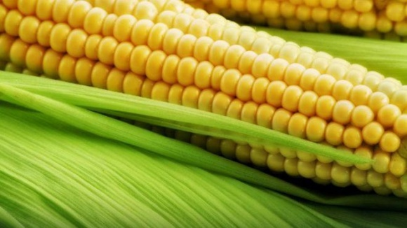 Агропросперис заключил первый в Украине зерновой СВОП-контракт на базисе СРТ-порт фото, иллюстрация