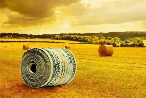 За девять месяцев 2018 года Индия закупила 10% отечественной агропродукции – Институт аграрной экономики фото, иллюстрация