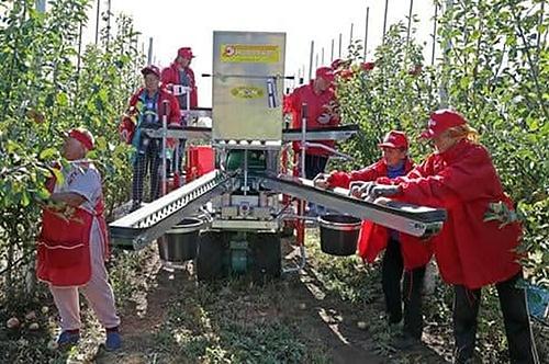 До Криму в обхід санкцій завезли агротехніку з Нідерландів фото, ілюстрація