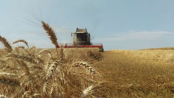 Жатва-2018: собран первый миллион зерна нового урожая фото, иллюстрация