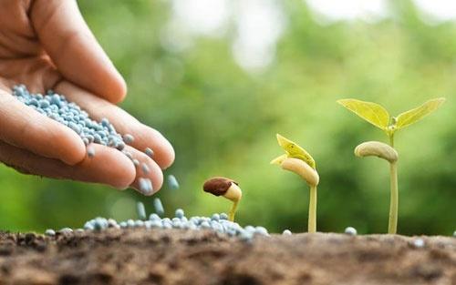 Украинские аграрии обеспечены минеральными удобрениями наполовину фото, иллюстрация