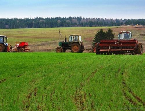 В Україні почали роботу інформаційні центри з підтримки розвитку фермерства фото, ілюстрація