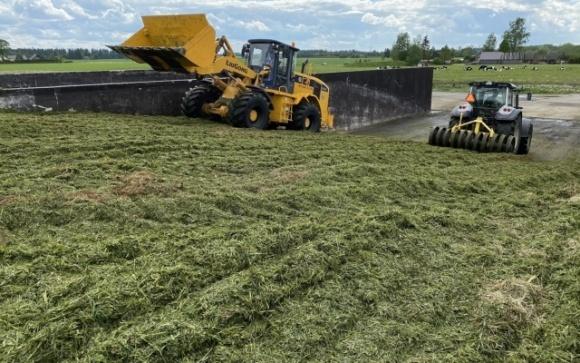 Робота в Естонії — фермери проти депортації українських заробітчан через порушення карантину фото, ілюстрація