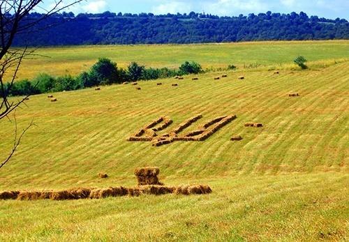 В ВР Украины зарегистрирован законопроект, запрещающий иностранцам покупать землю фото, иллюстрация
