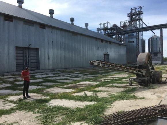 На Кировоградщине депутат горсовета подозревается в растрате зерна на 51 млн грн, — Офис генпрокурора фото, иллюстрация