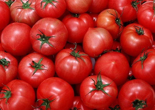На украинский рынок не допущено 36 тонн зараженных турецких помидоров фото, иллюстрация
