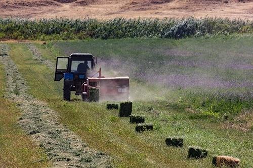 За сім років кількість фермерів в Україні зменшилась на 10 тис. фото, ілюстрація